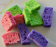 cutup-kitchen-sponges-568x480